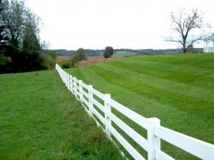 http://www.publicdomainpictures.net/pictures/50000/nahled/white-fence-and-green-grass.jpg Lire en diagonale, une solution de facilité qui mène dans l'impasse !