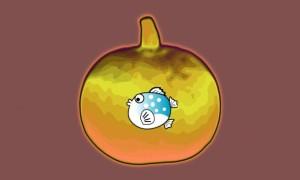 """""""Un Poisson dans le Net"""" : un site évangélique pionnier, porteur de bons fruits"""