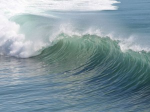 Face à la vague : résister, surfer complaisamment ou se laisser emporter ?