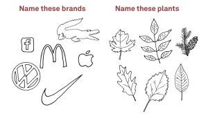 Nommez ces marques ; nommez ces plantes (Source : Adbusters)
