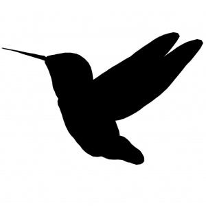 """Faut-il tourner le dos à """"la sagesse du colibri"""" ?"""
