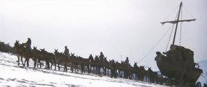 """""""Le convoi sauvage"""" : ici, tiré par une vingtaine de mules."""